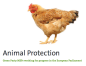 Animal protection hen