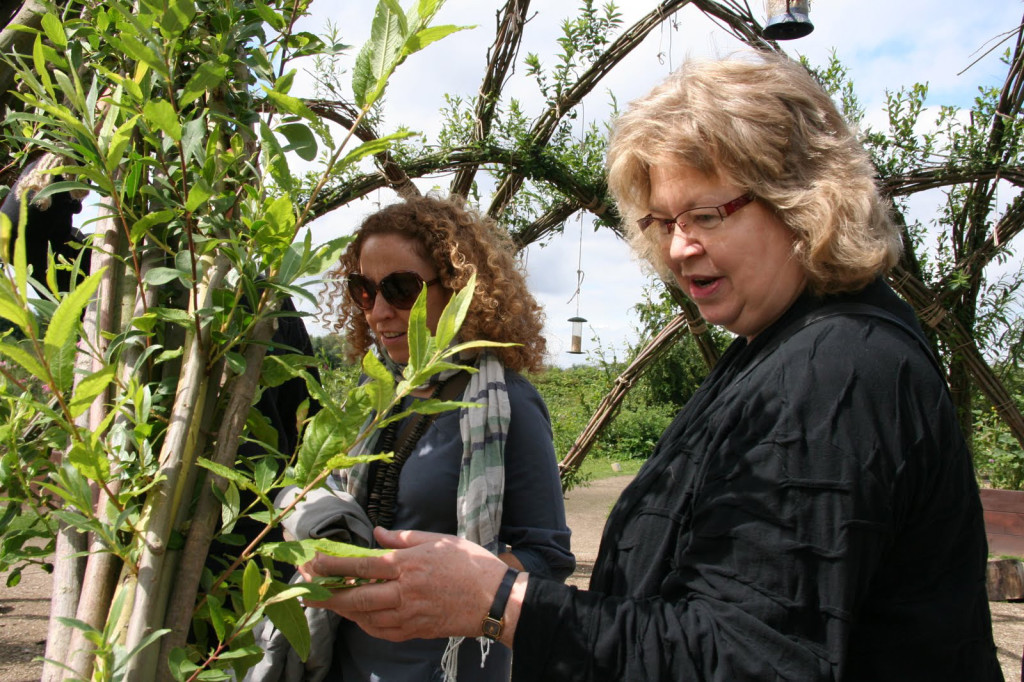 Jean looking at plants in a farm